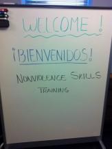 Nonviolence Skills Training